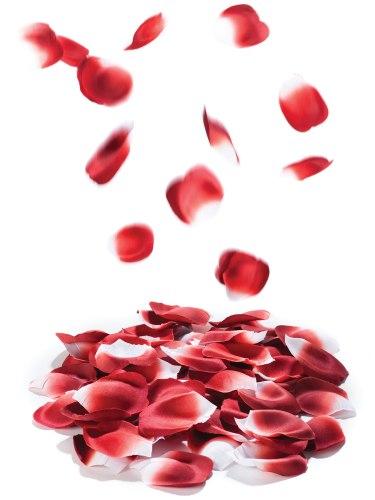 Vzrušující, zábavné a sexy doplňky do domácnosti: Romantické okvětní lístky růží